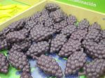 plastic grapes in the produce section -- H-E-B kids' market, San Antonio Children's Museum