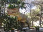 Tyrannosaus Rex in Dinosaurs Unearthed at Witte Museum in San Antonio Texas