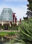 Pitcher Plant sarracenia sculpture Savage Gardens exhibit carnivorous plants San Antonio Botanical Garden Texas