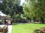 Savage Gardens carnivorous plants San Antonio Botanical Garden   San Antonio Charter Moms