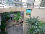 San Antonio Botanical Garden BOOtanica! Fall Festival 2013 venus flytrap sculpture | San Antonio Charter Moms
