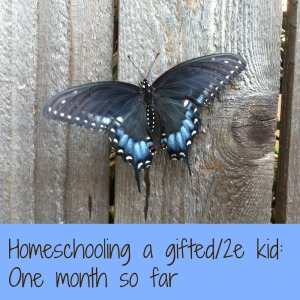 [GHF Blog Hop] Homeschooling a gifted/2e kid: one month so far | San Antonio Charter Moms