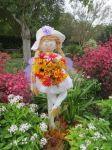 Baby at Scarecrow Trail at San Antonio Botanical Garden   San Antonio Charter Moms