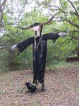 Bevo at Scarecrow Trail at San Antonio Botanical Garden | San Antonio Charter Moms