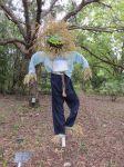 Sales at Scarecrow Trail at San Antonio Botanical Garden | San Antonio Charter Moms