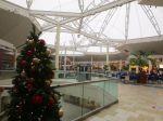 Rolling Oaks Mall | San Antonio Charter Moms
