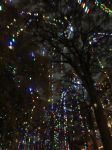 San Antonio Riverwalk holiday lights | San Antonio Charter Moms