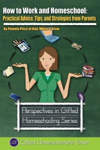"""[Giveaway] """"How to Work and Homeschool"""" by Pamela Price   San Antonio Charter Moms"""