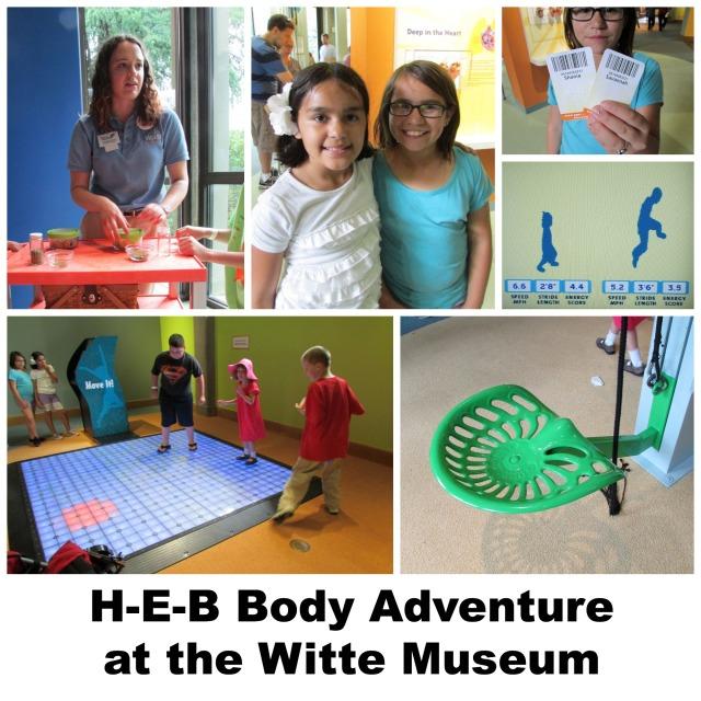H-E-B Body Adventure at the Witte Museum | San Antonio Charter Moms