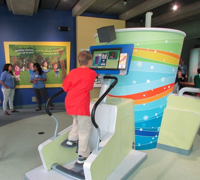 Burn off a soda at H-E-B Body Adventure at the Witte Museum | San Antonio Charter Moms