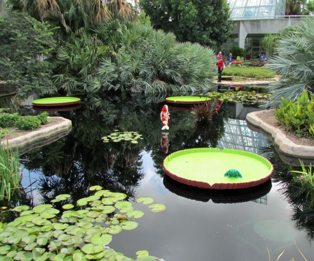 Water platters and koi by Sean Kenney at Nature Connects Art with LEGO Bricks, San Antonio Botanical Garden | San Antonio Charter Moms